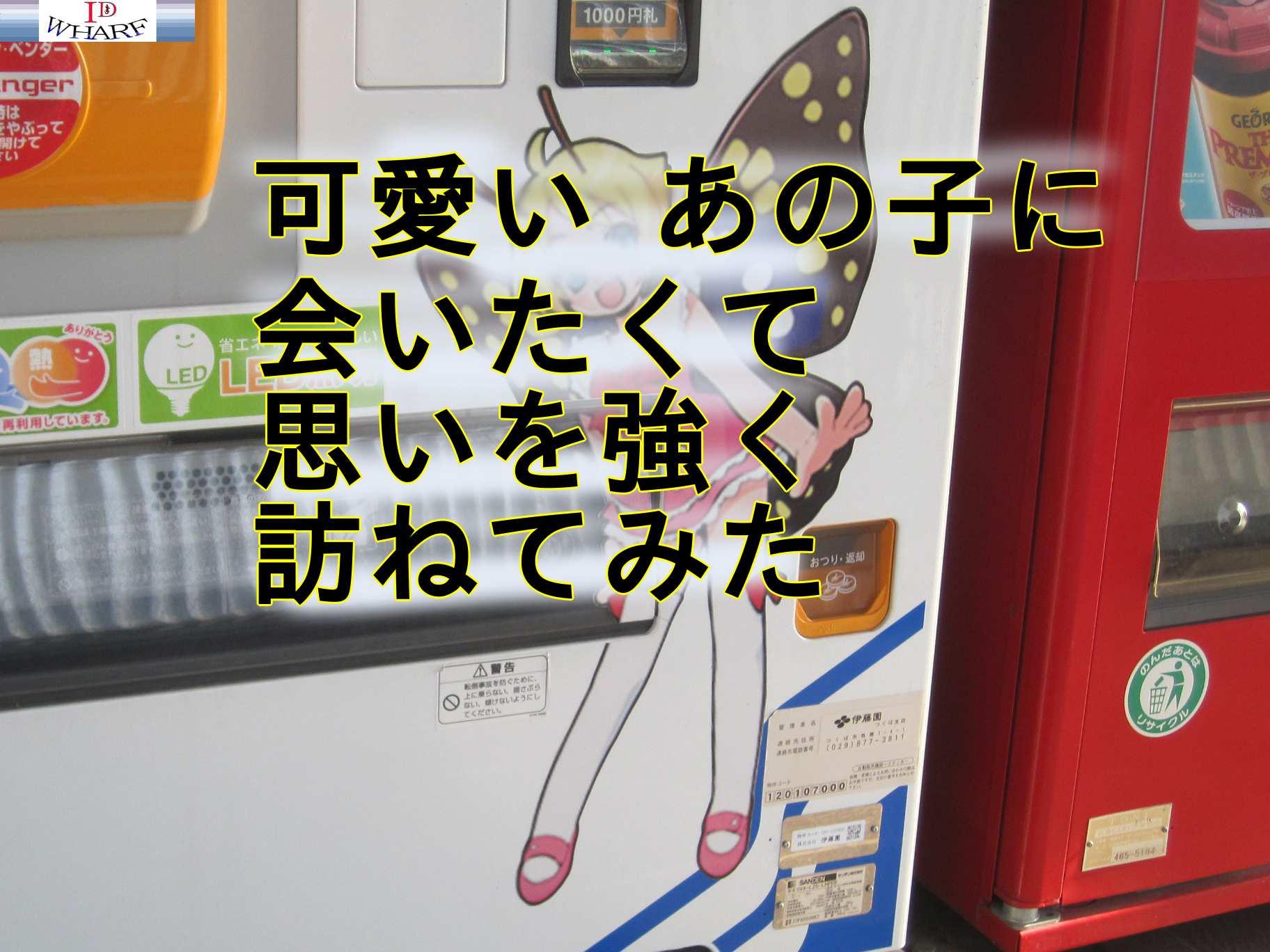シモンちゃん